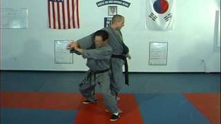 Ji Han Jae, Hapkido Cross Hand Grab Technique 7, Backthrow