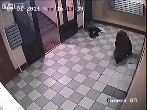 CCTV brutal assault and mugging of two elderly women russia