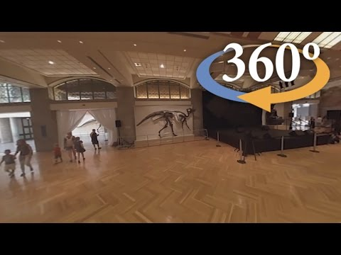 Behind the scenes at the Royal Ontario Museum (360 Video)