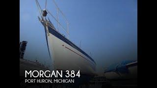 Used 1984 Morgan 38 for sale in Port Huron, Michigan