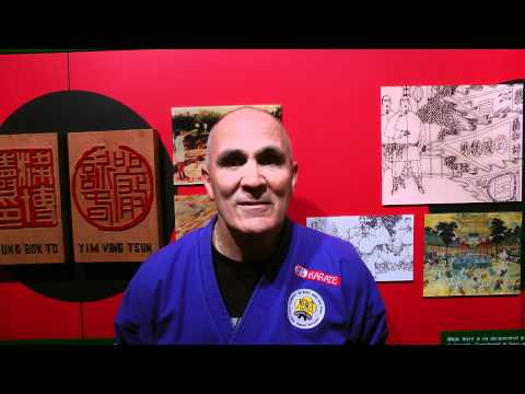 Black Flag Wing Chun [HKB Wing Chun] - 190th Testimony from USA, North America #93