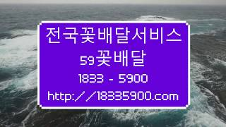 서울꽃집 근조화환 축하화환 3단근조화환 결혼식쌀화환 5…