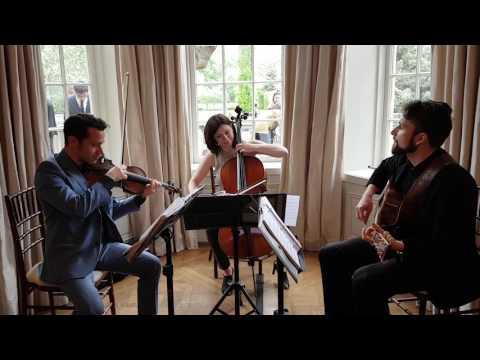 Goo Goo Dolls- Iris The Guitar Guys ( string cover )