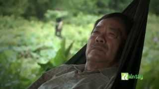 Nhạc sĩ Tô Thanh Tùng và dòng nhạc Bolero
