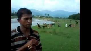 Goat farming in Nepal by Nepali farmer