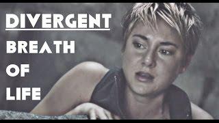 Video Divergent Tribute Breath of Life download MP3, 3GP, MP4, WEBM, AVI, FLV September 2018