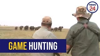 GRAPHIC WARNING - WATCH: 'Hit it between the eyes'- elephants charge at hunters after one shot down