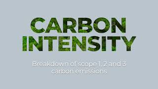 Carbon and ESG Reporting for Pension Scheme - CACEIS 2021