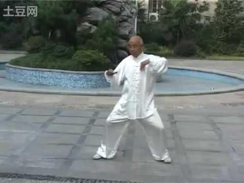 Chen Taijiquan. Master Fan Hongxin (范鸿信)