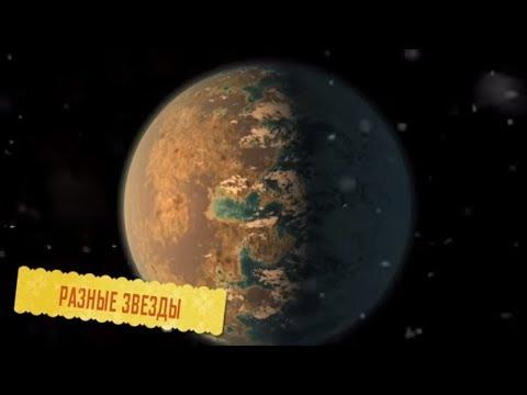 Как может выглядеть жизнь на других планетах