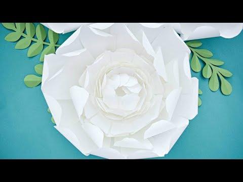 Giant Paper Peony Flower Tutorial - DIY Paper Flowers