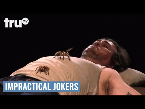 Impractical Jokers  Warehouse of Tarantula Terror Punishment  truTV