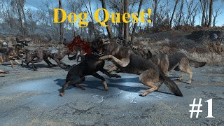 My (1 Int) dog quest | Fallout 4 game play and commentary