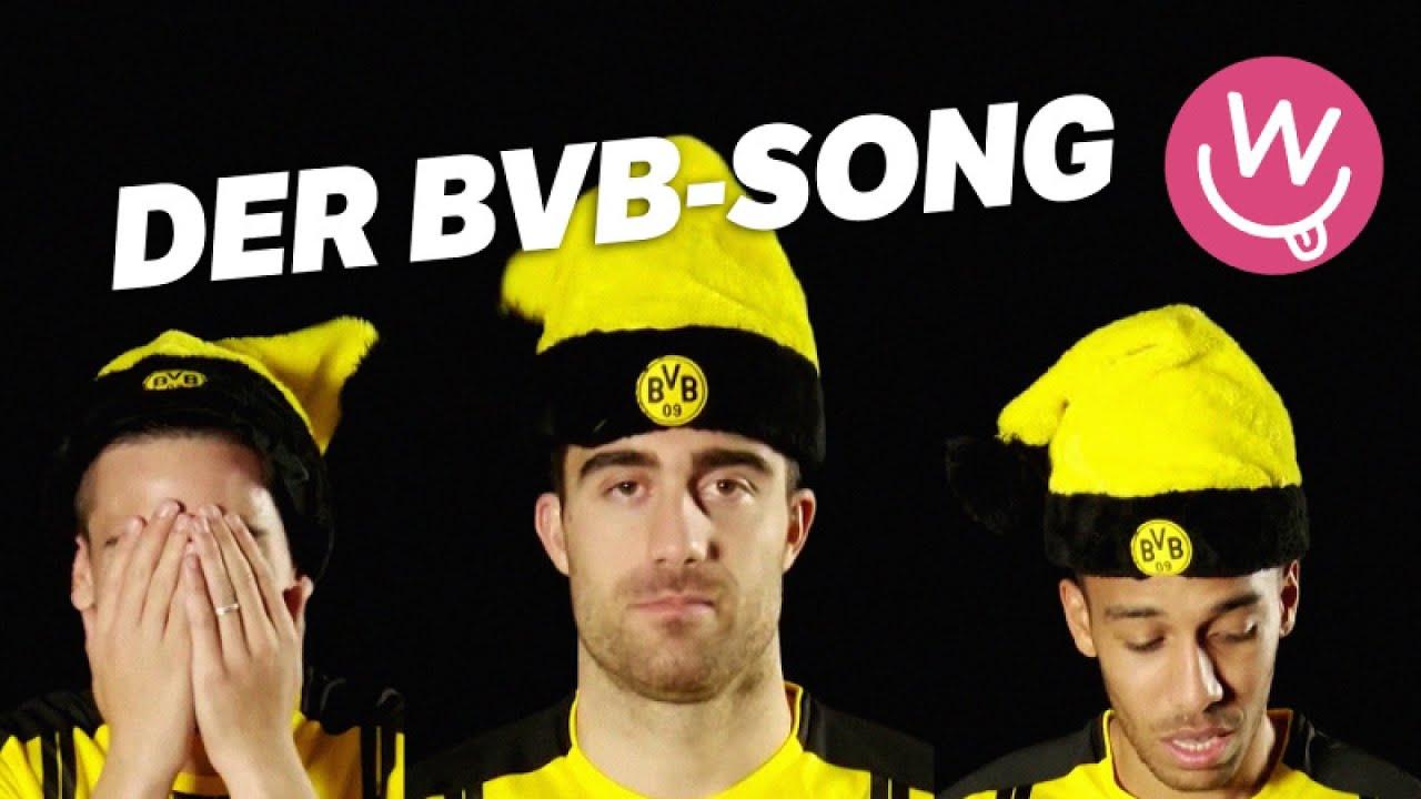 Der Bvb Song Youtube