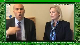 BREAKING: Sen. Gillibrand is cosponsoring Sen. Cory Booker's #MarijuanaJusticeAct