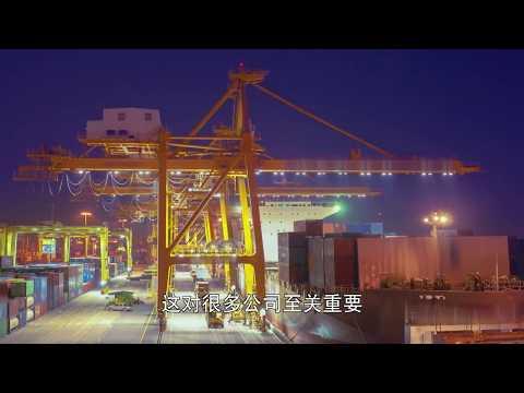 WTCA: An Ecosystem of World Trade (Mandarin)