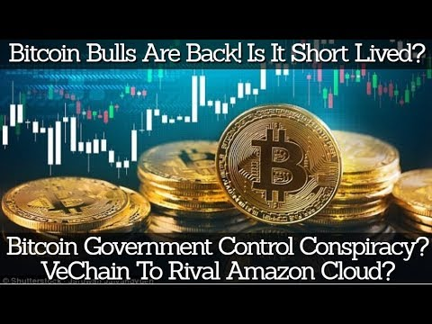 Bitcoin Bulls Are Back! Is It Short Lived? Bitcoin Government Control Conspiracy? VET Rival Amazon