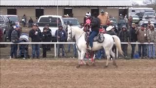 8 C  Aguila, C  RBJ Ranch y C  Jovenes