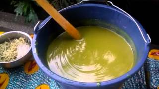 Making Moringa Soap with all natural ingredients