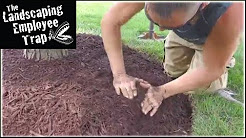 "(Episode#22) A CHALLENGE for You? ""Landscape Mulch Tips"""
