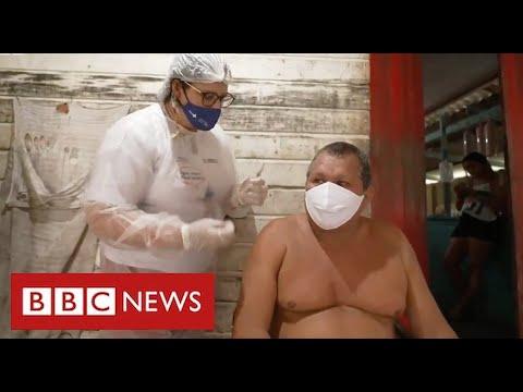 Brazil's remote Amazon communities receive Covid vaccines - BBC News