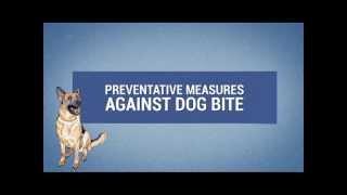 Preventative Measures Against Dog Bites