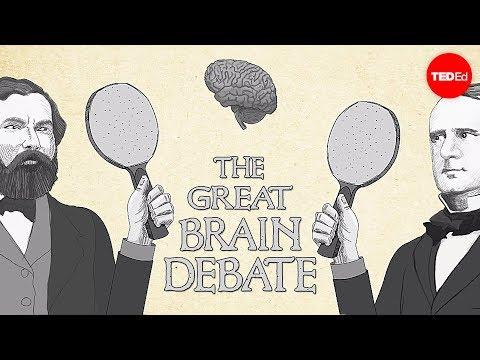 Video image: The great brain debate - Ted Altschuler