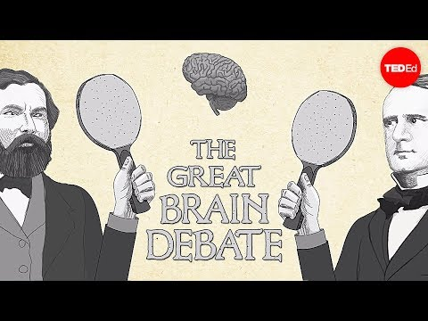 how to debate ted talk