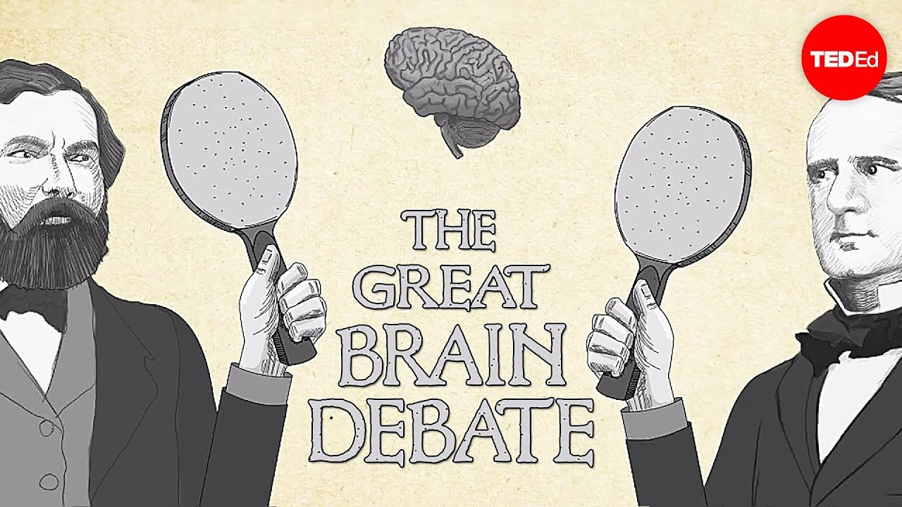 The great brain debate - Ted Altschuler