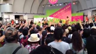 Modern Dog show at Thai Festival 2014 in Tokyo