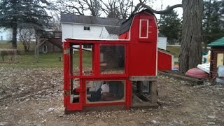 Chicken Coop Built Out Of Recycled Material!!
