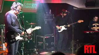 Jean-Louis Murat - Le cri du papillon en live dans le Grand Studio RTL