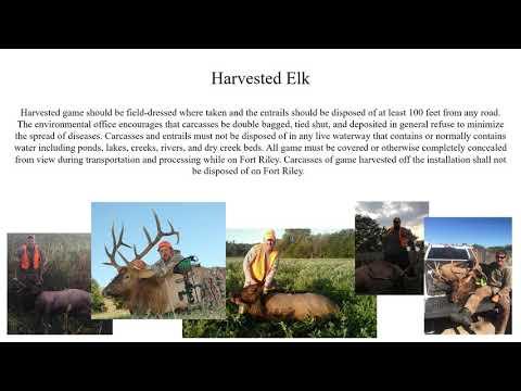 2019 Ft Riley Elk Brief