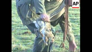 FRANCE: CHARLES DE GAULLE AIRPORT: UNWANTED RABBIT INVASION