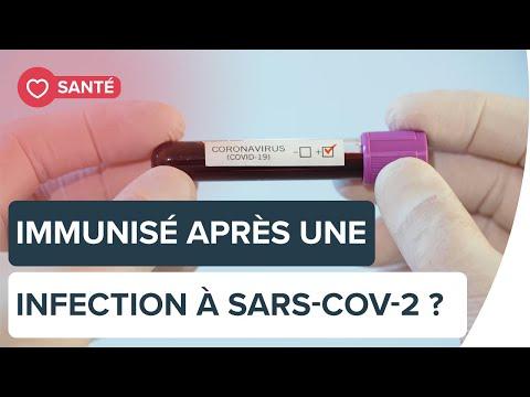 Sommes-nous protégés après une infection à SARS-CoV-2 ?   Futura