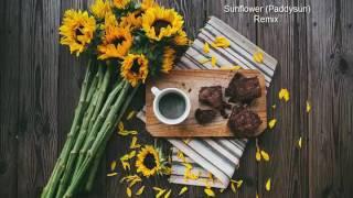 Sunflower (Paddysun) guitar remix by haketu