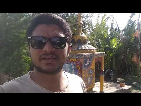 moringa leaves organic farming in india B-kisan kisan pathshala Balram jat 9424538222