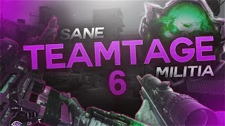 Sane - Teamtage 6 (Call of Duty Sniping Montage)