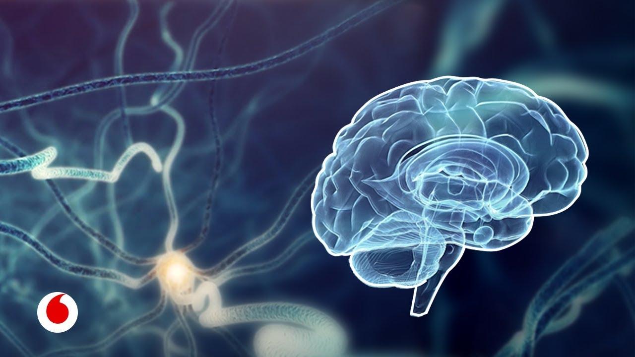 La inteligencia artificial nos ayudará a dibujar el mapa del cerebro