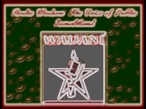 Radio Wadanii Codka Shacabka Somaliland  new logo