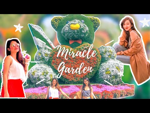 Dubai Miracle Garden: First Vlog!