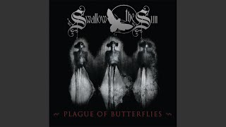 Plague of Butterflies: Losing the Sunsets - Plague of Butterflies - Evael 10:00