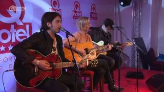 The Common Linnets -