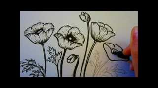 Flower Tutorial - How To Draw Flowers - Poppy Flowers(http://Overnightartist.com - Exclusive training will show you how to change any drawing and turn it into the best personal gift.