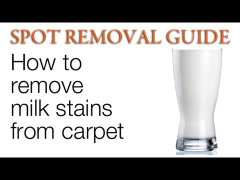 how to clean spots out of carpet