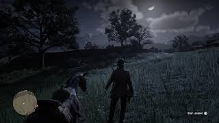 Red Dead Redemption 2*