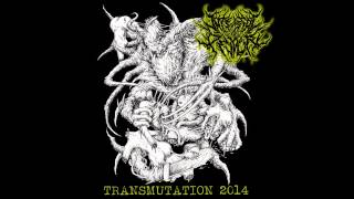 Internal Devour- Marinated Remnants of the Putrid [New Song 2014]