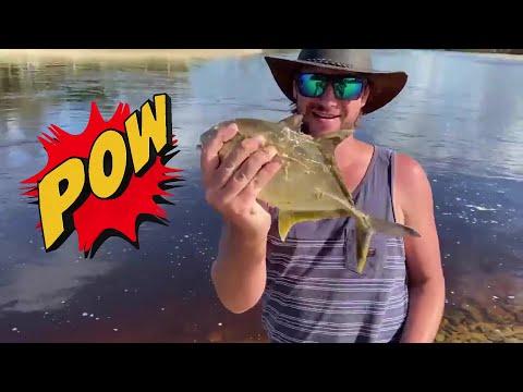 Lure Fishing Sandon River!!!