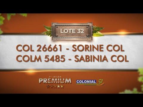 LOTE 32   COL 26661, COLM 5485