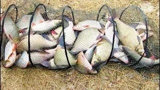 Ловля рыбы Вентерем